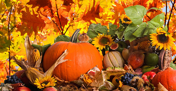 1183-autumn-harvest-wallpaper-1680x1050