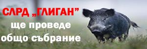 vme banner